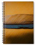 Blue Jay Way Spiral Notebook