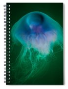Blue Jelly Series 4 Spiral Notebook