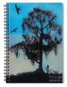 Blue Kite Sunset Spiral Notebook
