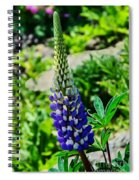 Blue Lupins Spiral Notebook