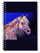 Blue Spiral Notebook
