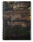 Blue Mountains Waterfall Spiral Notebook