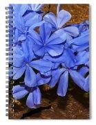 Blue Plumbago Spiral Notebook