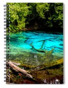 Blue Pool Spiral Notebook
