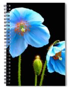Blue Poppy Flowers # 4 Spiral Notebook