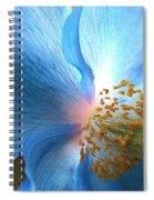 Blue Poppy Spiral Notebook
