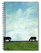 Blue Skies And Blue Grass Spiral Notebook