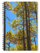 Blue Skies And Golden Aspen Trees Spiral Notebook