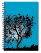 Blue Sky Moon Spiral Notebook
