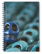Blue Smile Spiral Notebook