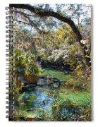 Blue Springs 1 Spiral Notebook
