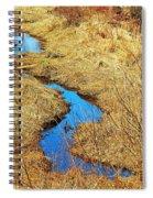 Blue Stream Spiral Notebook