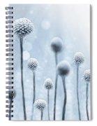 Blue Sunshine Spiral Notebook