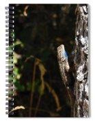 Blue Throated Lizard 1 Spiral Notebook