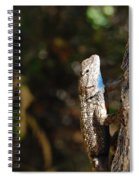 Blue Throated Lizard 2 Spiral Notebook