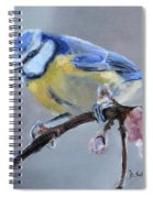 Blue Tit And Blossoms Spiral Notebook