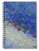 Blue Trail Spiral Notebook