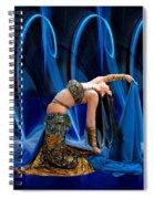 Blue Veils Spiral Notebook