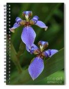 Blue Walking Iris Spiral Notebook