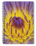 Blue Water Lily Spiral Notebook