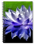 Blue Water Lily Reflection Spiral Notebook