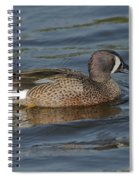Blue-winged Teal Spiral Notebook