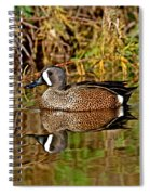 Blue-winged Teal Drake Spiral Notebook