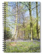 Bluebell Time In England Spiral Notebook