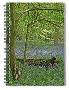 Bluebell Wood 1 Spiral Notebook