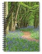 Bluebell Wood 3 Spiral Notebook