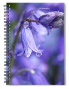 Bluebells After The Rain 2 Spiral Notebook