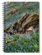 Bluebells At Bransdale Spiral Notebook