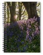 Bluebells Backlit Spiral Notebook