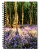 Bluebells In Shadows Spiral Notebook