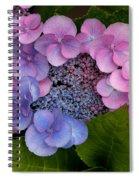 Blueberries And Cream Spiral Notebook