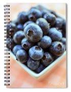 Blueberries Closeup Spiral Notebook
