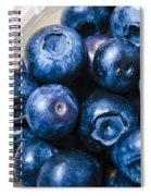 Blueberries Punnet Spiral Notebook