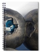 blueberries V Spiral Notebook