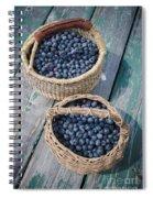 Blueberry Baskets Spiral Notebook
