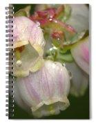 Blueberry Blossoms Spiral Notebook