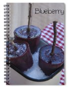 Blueberry Popsicles Spiral Notebook
