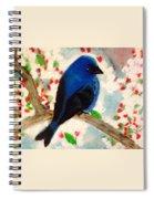 Bluebird Amid Apple Blossoms Spiral Notebook