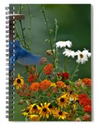 Bluebird And Colorful Flowers Spiral Notebook