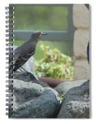 Bluejay And Mockingbird Spiral Notebook