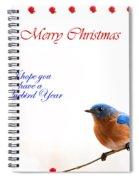 Bluebird Christmas Card Spiral Notebook