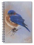 Bluebird In The Snow Spiral Notebook