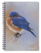 Bluebird In The Snow Spiral Notebook