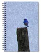 Bluebird On A Fencepost Spiral Notebook
