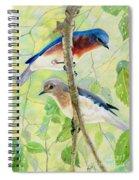 Bluebird Pair Spiral Notebook