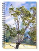 Bluebird Tree Spiral Notebook